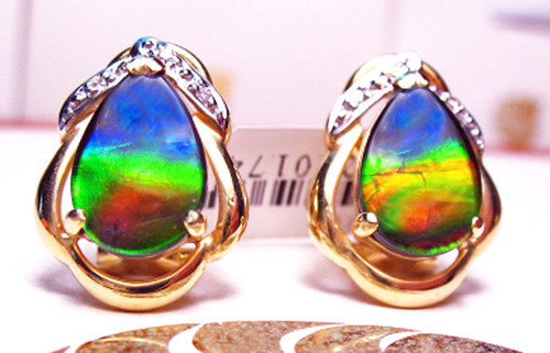 Korite Ammolite Pear Omega Back Earrings 19KGE