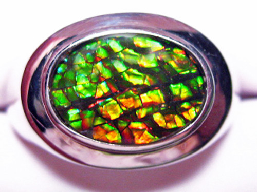 Korite Ammolite Oval Men's Ring 20KSR