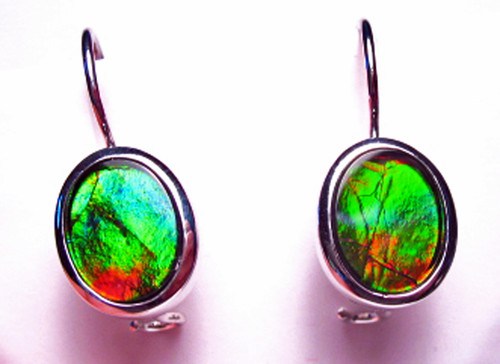 Korite Ammolite Oval Earrings 5KSE