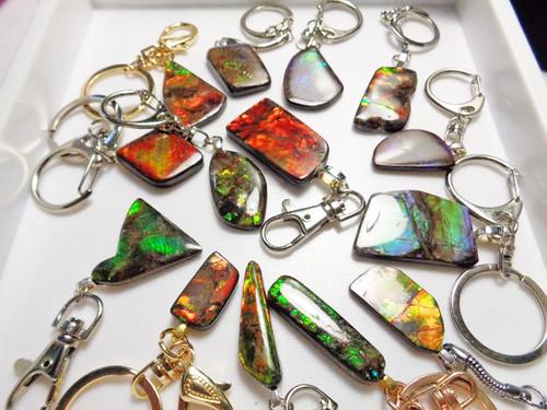 Ammolite key chains, key rings
