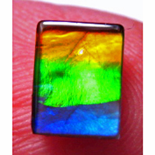 Ammolite Rectangle Loose Stone 13LS