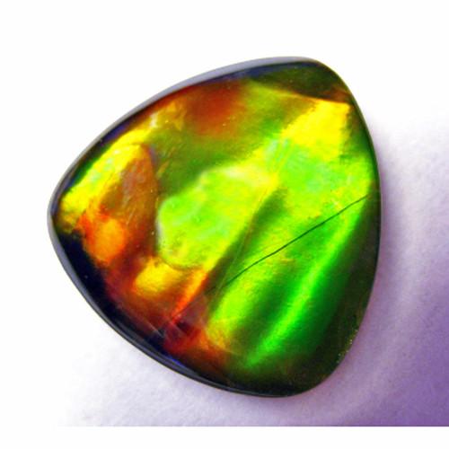 Ammolite Trillion Loose Stone 36LS