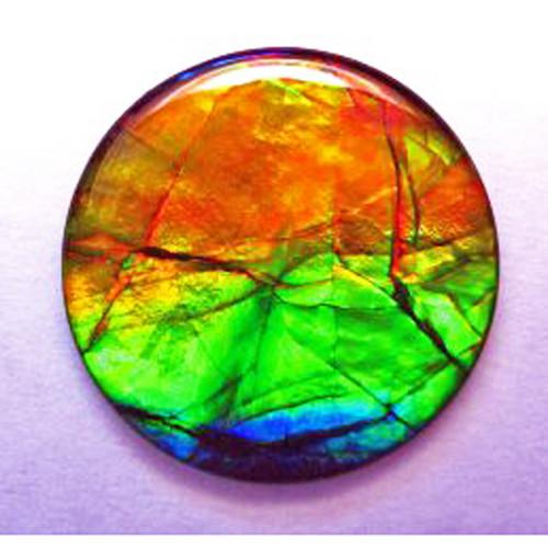 Ammolite Round Loose Stone 39LS