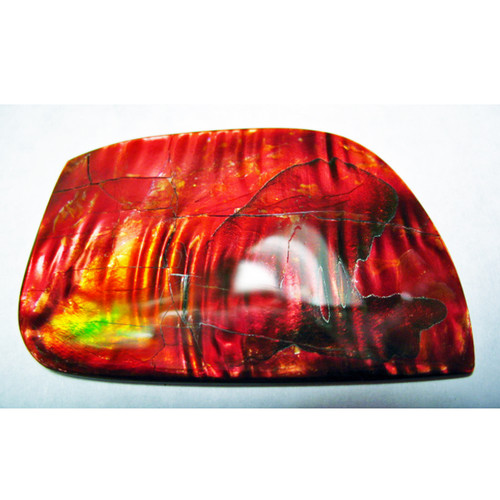 Ammolite Imperial Double Sided Loose Stone 5IMLS