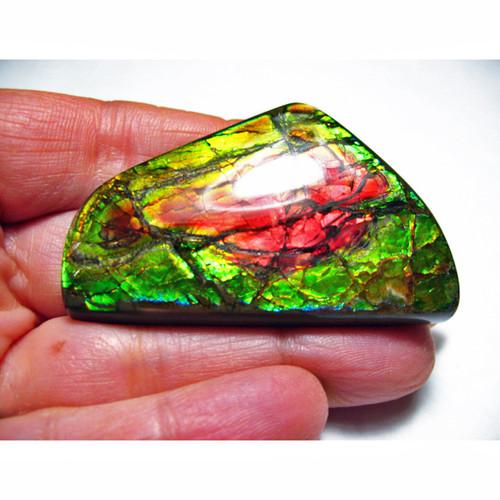 Ammolite Large Polished Hand Specimen 6LHPLS