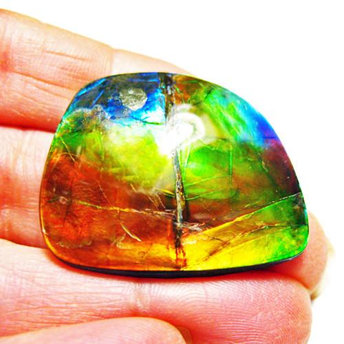 Ammolite Large Polished Hand Specimen 7LHPLS