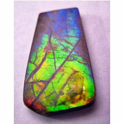 Ammolite Natural Polished Loose Stone Freeform 18HPLS