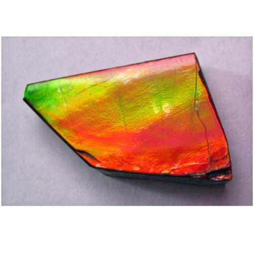Ammolite Natural Polished Loose Stone Freeform 24HPLS