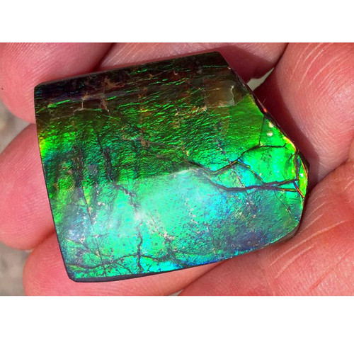 Ammolite Natural Polished Loose Stone Freeform 30HPLS