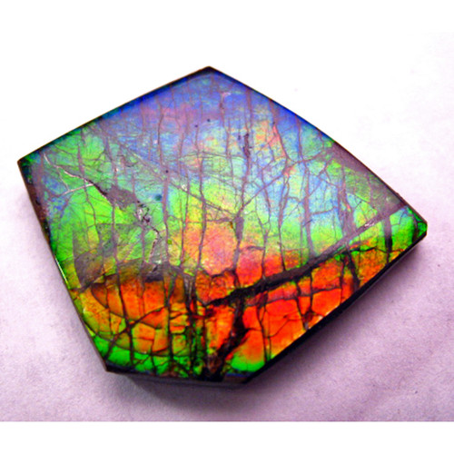 Ammolite Natural Polished Loose Stone Freeform 38HPLS