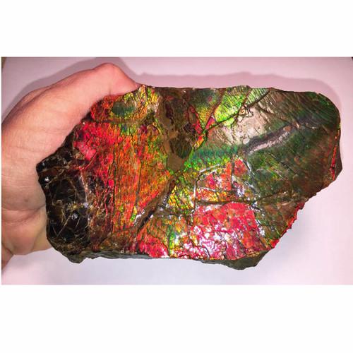 Ammolite Hand Specimen Piece 1AHP