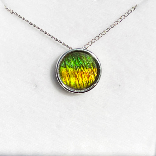 Ammolite Round Sterling Silver Slide Pendant Necklace  135SP