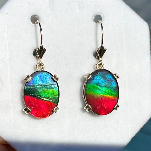 14K Ammolite Oval Dangle Drop Earrings 19GLE
