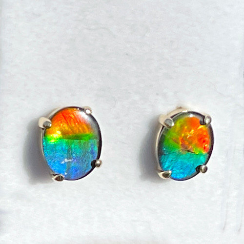 14K Ammolite Oval Stud Earrings 2GE