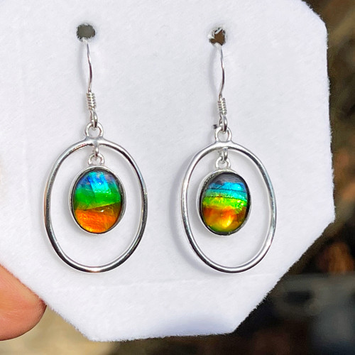 Ammolite Oval in Oval Dangle Earrings 27SLE