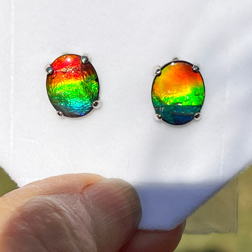 14KW Ammolite Oval Stud Earrings 12GE