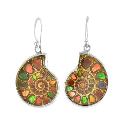 Ammolite in Ammonite Sterling Silver Dangle Earrings