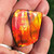 Ammolite Imperial Double Sided Loose Stone 22IMLS