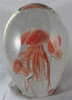 Jellyfish Aquarium/Coral/Glow In The Dark/Home Decor/Glass Art
