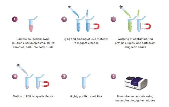 xNetic™ Viral DNA/RNA Extraction Kit