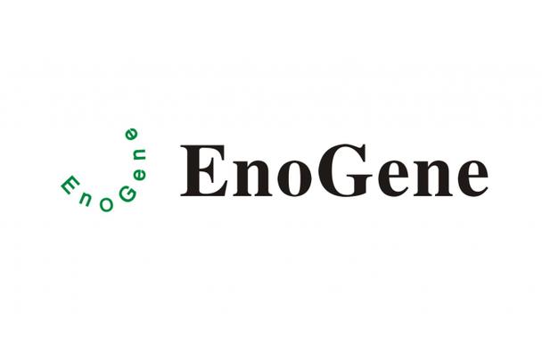 2019-nCoV E Recombinant Protein