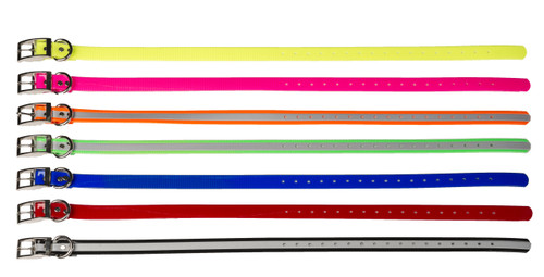 Dayglo Dog Collars with Dee