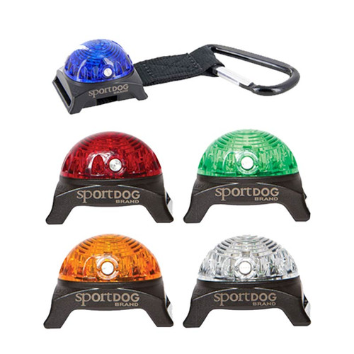 SportDog Beacon Lights