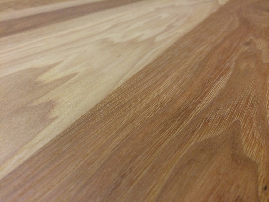 Calico Hickory Close-up