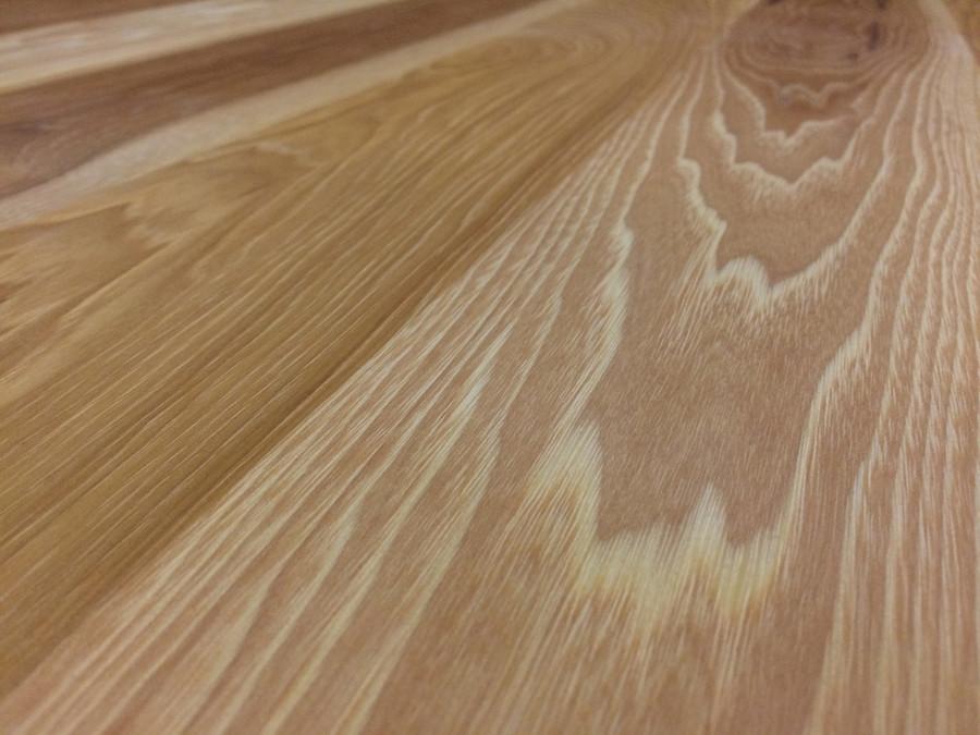 Calico Hickory Close-up