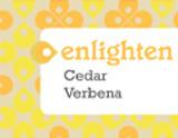 Enlighten - Cedar Verbena