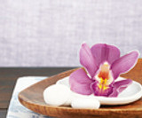 Teak & Orchid