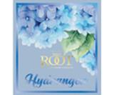 Hydrangea - La Fleur Collection
