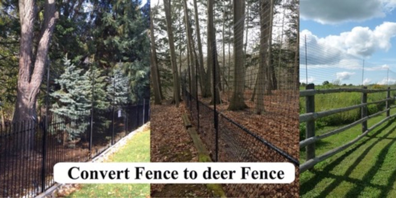 Existing fence converted to deer fence