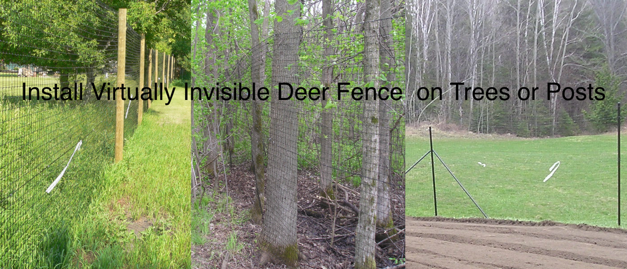 Deer fence on Trees Wooden posts or steel posts