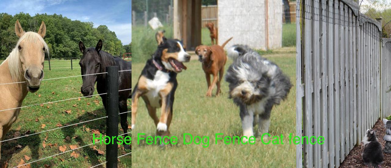 Horse fence , dog fence and cat fence
