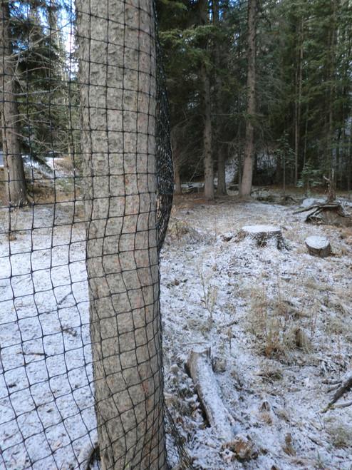 Deer fence on trees