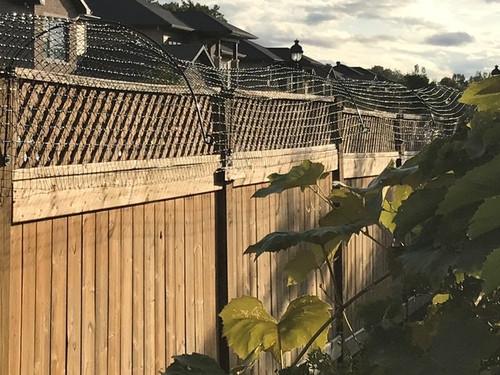 Cat fence conversion of lattice fence