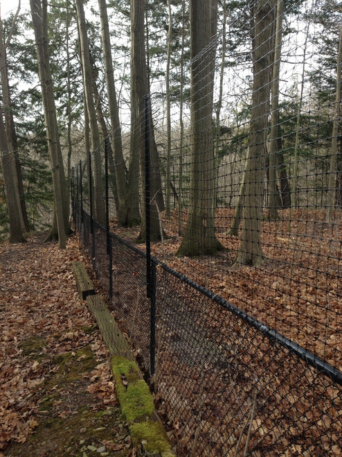 Chain Link Fence conversion to deer fence