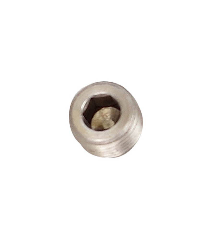 "1/4"" Stainless NPT Socket Head Plug for Bean Machine Sump"