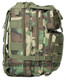 Woodland Camo Level III Assault Pack By Voodoo