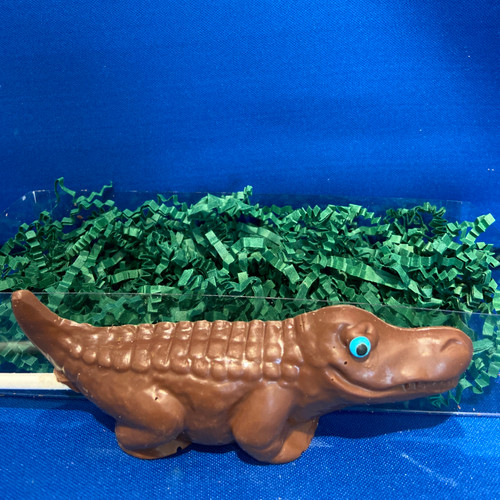 Chocolate Alligator