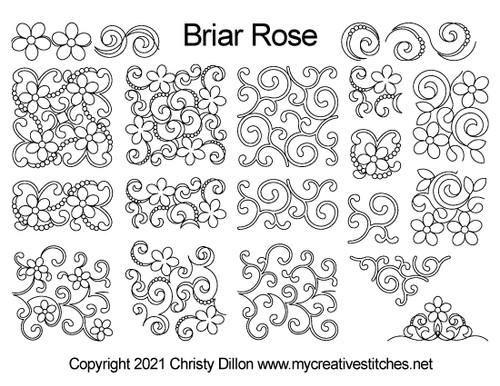 Briar rose may 2021 mystery set