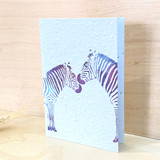 Zebras | Recycled Paper Plantable Greeting Card | Handmade in South Africa
