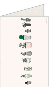 Cactus   Recycled Paper Plantable Greeting Card   Handmade in South Africa