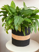 Kiondo Basket - Black with Natural Stripe | 11"