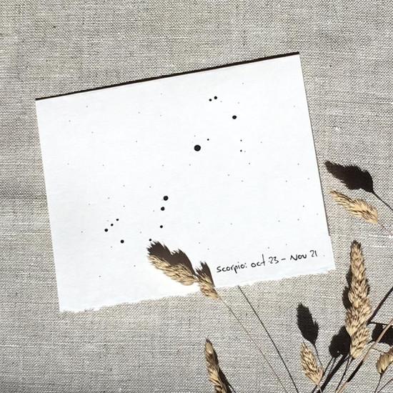 Greeting Card | Scorpio