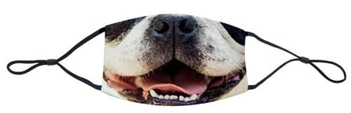 loveJack Face Mask - Boston Smile -  LJK-1007-001