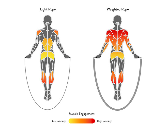 Efficient Muscle Graphic