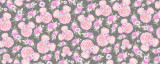 Fuchsia Pink Floral Minnie Ears