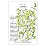 Summer Savory Seeds Heirloom